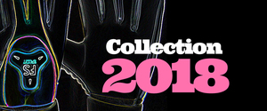 Thumb_collection2018